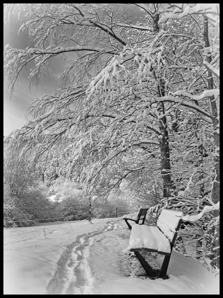 Petits bancs sous la neige 20121027111648-b07d794d-me