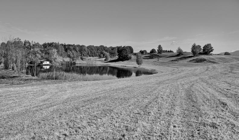 Petit étang Haut-Saônois 20130104164649-c3ba209d-me