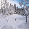 PAYSAGE HIVERNAL||<img src=./_datas/w/s/0/ws0g15agsk/i/uploads/w/s/0/ws0g15agsk//2012/12/09/20121209160954-ca351f9c-th.jpg>