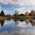 Reflets d'automne||<img src=./_datas/w/s/0/ws0g15agsk/i/uploads/w/s/0/ws0g15agsk//2013/11/23/20131123150500-2baa067a-th.jpg>