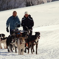 Mushing au Ballon d'Alsace||<img src=./_datas/w/s/0/ws0g15agsk/i/uploads/w/s/0/ws0g15agsk//2014/02/16/20140216133929-95345b1b-th.jpg>