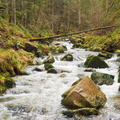 Le ruisseau de Xoulces||<img src=./_datas/w/s/0/ws0g15agsk/i/uploads/w/s/0/ws0g15agsk//2014/03/24/20140324163741-8be1f071-th.jpg>