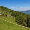 Ferme auberge du Thanner-Hubel||<img src=./_datas/w/s/0/ws0g15agsk/i/uploads/w/s/0/ws0g15agsk//2014/05/31/20140531212421-904bcaaa-th.jpg>