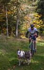 Mushing de La Bresse 10 octobre 2015