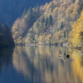Pêcheur sur le Doubs||<img src=./_datas/w/s/0/ws0g15agsk/i/uploads/w/s/0/ws0g15agsk//2017/11/11/20171111150900-195e5f67-th.jpg>