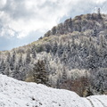 Neige de printemps au rouge gazon||<img src=./_datas/w/s/0/ws0g15agsk/i/uploads/w/s/0/ws0g15agsk//2019/05/13/20190513164453-67a34a5f-th.jpg>