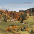 Automne dans les Vosges||<img src=./_datas/w/s/0/ws0g15agsk/i/uploads/w/s/0/ws0g15agsk//2020/11/07/20201107101003-6076ba0a-th.jpg>