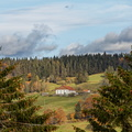 Automne dans les Vosges||<img src=./_datas/w/s/0/ws0g15agsk/i/uploads/w/s/0/ws0g15agsk//2020/11/07/20201107101022-aaff8215-th.jpg>